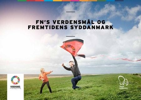 Billedet viser forsiden af publikationen